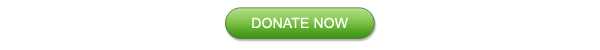 November 2013 Appeal Donate Now                                    Button