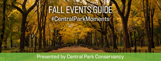 Fall Events Guide